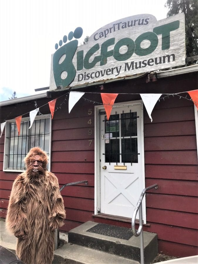 Someone in a bigfoot costume stands in front of the bigfoot discovery museum