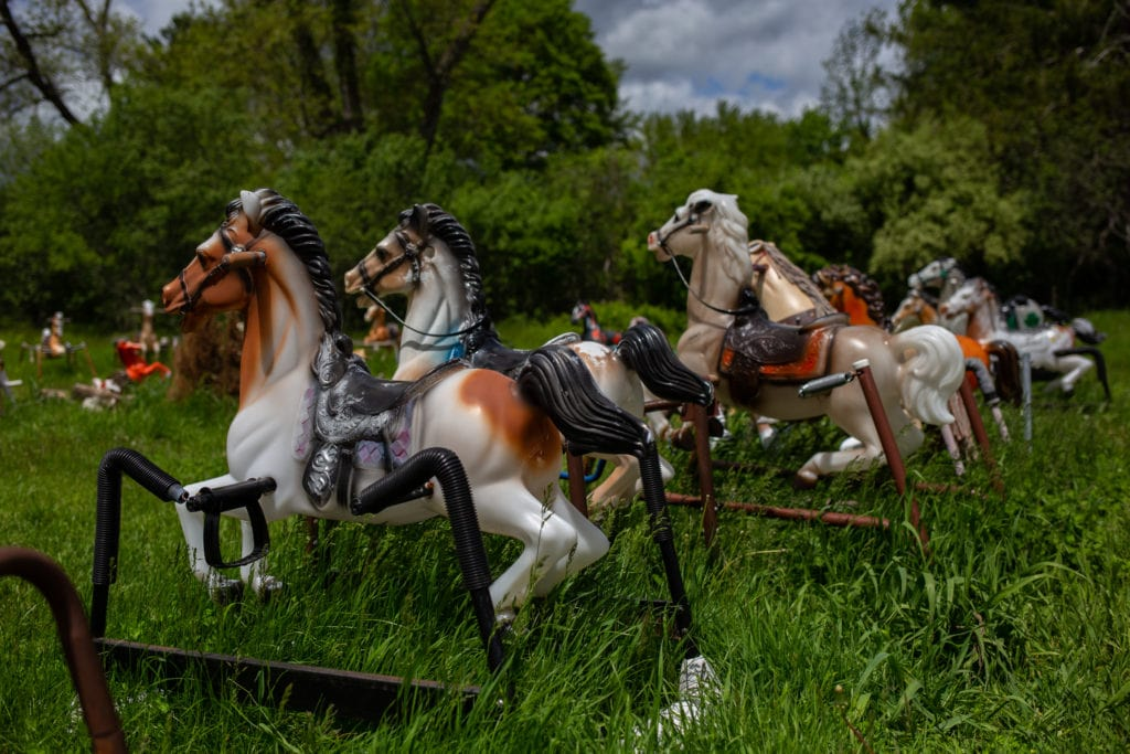 rocking horses in a field