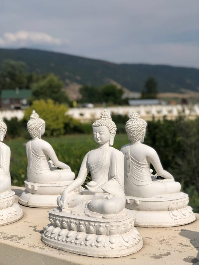 All-white Buddha figures.