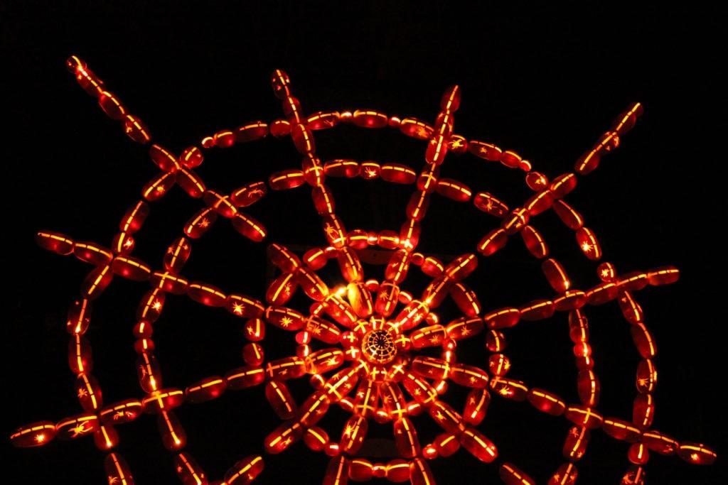 A spider web.