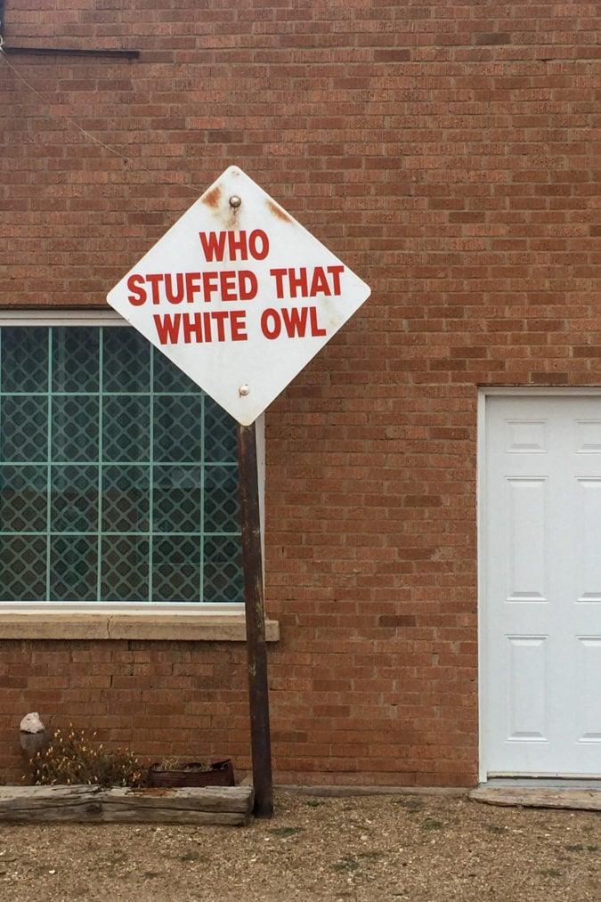 """""""Who stuffed that white owl."""""""