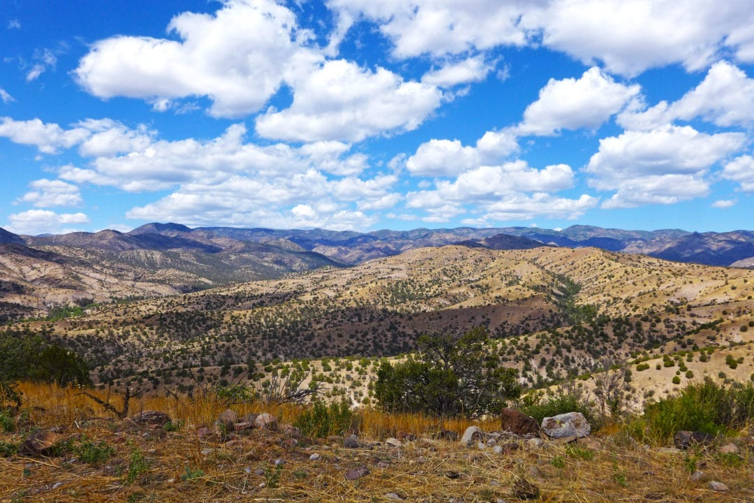 ladder house view of gila national forest