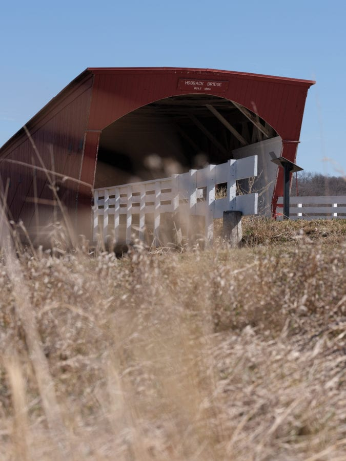 Entrance to covered bridge among tall grasses blowing in the wind