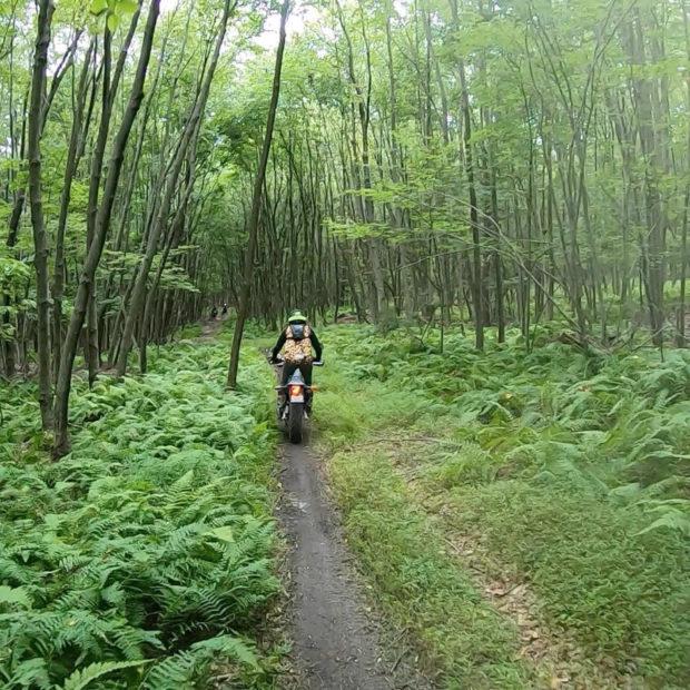A magical dual-sport adventure through the wooded terrain of Pennsylvania